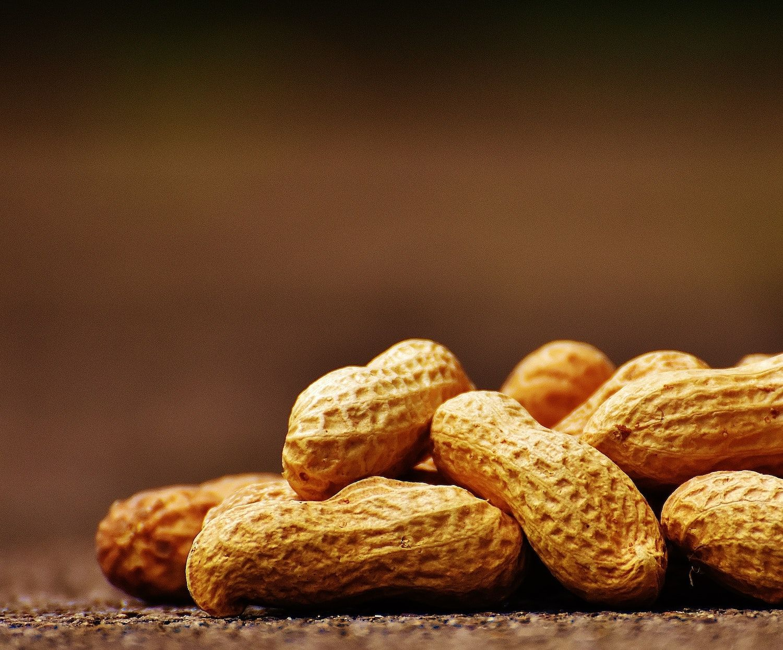 positive Eigenschaften Erdnüsse – WUSSTEST DU SCHON!?