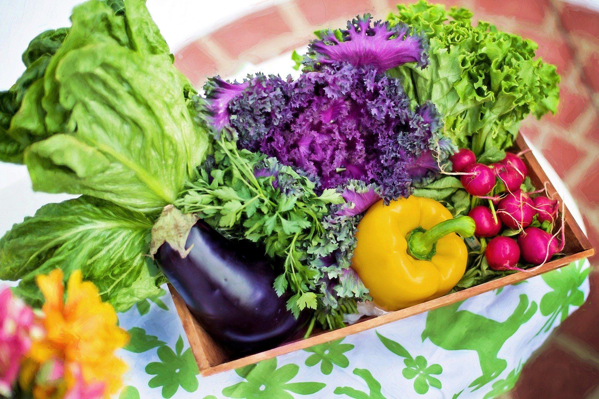 Alles is(s)t Gewohnheit – Wie die Gewöhnung an den Geschmack unser Essverhalten beeinflusst?!